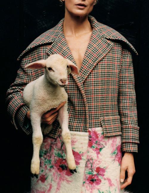 womens-fashion-look-florals-multicolor-tweed